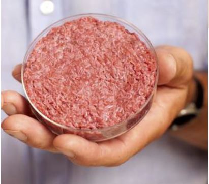 Glimpses on Lab-Grown Meat