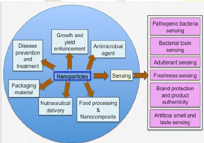 Applications of Nanotechnology in Fruits and Vegetables